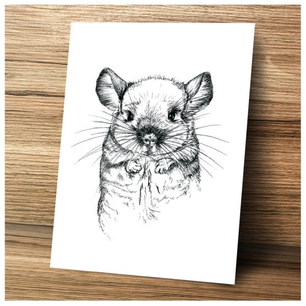 Chinchilla my Love Art Print von camarocaro